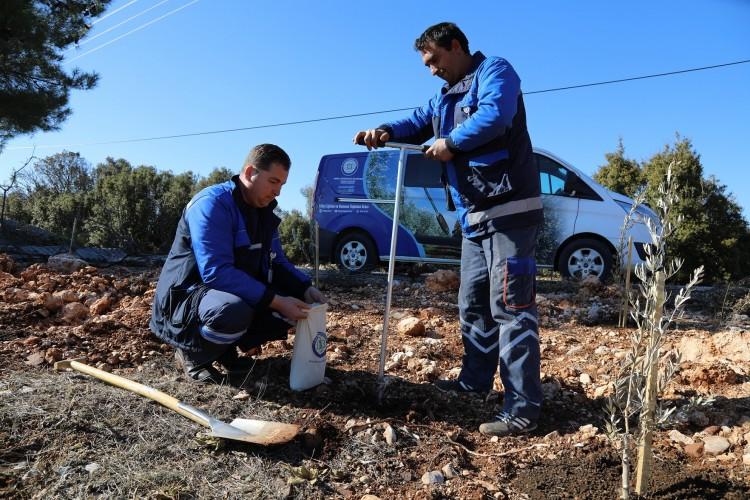 Türkiye'nin tarımına Muğla'dan büyük katkı