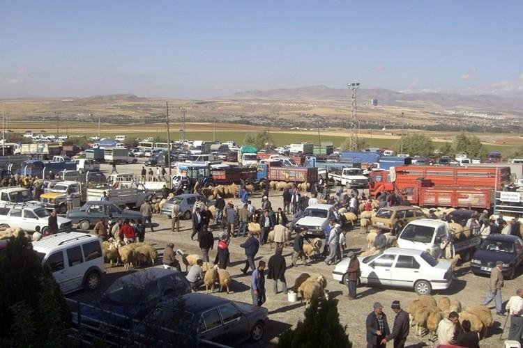 Kırşehir Ticaret Borsası Kurban Bayramına Hazır