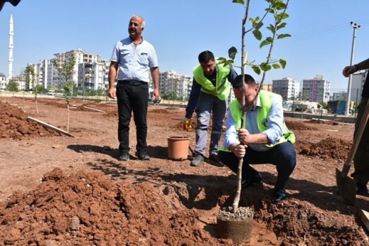 Bağlar Belediyesi'nden Tarım Bilinci İçin Örnek Uygulama